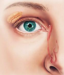 15 vias lacrimais
